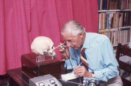 Calvin Wells examining a human skull in his office at White Horse Cottage, Hapton, Norfolk, c.1970. The University of Bradford, Bradford [Catalogue no. CAL/11/32]. Copyright the 