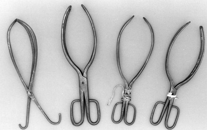 Photo of chamberlen forceps